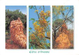 1-003   COTE D IVOIRE - Ivory Coast