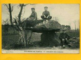3602 - Environs De Parnac - Dolmen Des Gorces - Autres Communes
