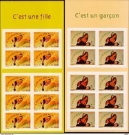 2004  Carnets  AA  N° BC40 Et BC41  Neufs**(faciale: 10.00€) - Carnets
