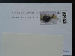 Elephant National Geographic Timbre En Ligne Sur Lettre (e-stamp On Cover) TPP 4564 - Eléphants