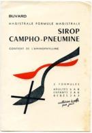 Buvard  13.4 X 20 Laboratoire TORAUDE  Sirop Campho-pneumine  Cuillère - Produits Pharmaceutiques