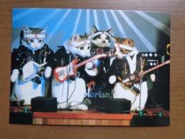 Katten, Cats, Chats / Rock And Roll (1984 By Satoru Tuda) -> Unwritten - Cats