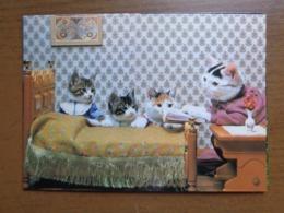 Katten, Cats, Chats / Bedtime Story (1984 By Satoru Tuda) -> Unwritten - Chats