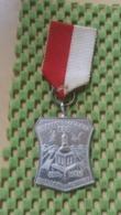 Medaille :Netherlands  -  2e Panorma Tocht Ede, Chr. W.S.V Willen Is Kunnen   / Vintage Medal - Walking Association - Nederland