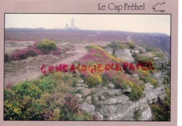 22 - CAP FREHEL- PARURE D' ETE POUR DES FALAISES - Cap Frehel