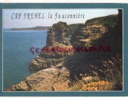 22 - CAP FREHEL-   LE ROCHER DE LA FAUCONNIERE - Cap Frehel