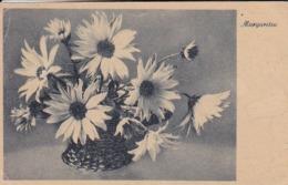 AK Margareten In Basttopf - Blumen   (44103) - Blumen