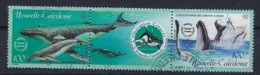 """Nle-Caledonie YT 844 & 845 Paire """" Baleine à Bosse """" 2001 Oblitéré - Neukaledonien"""
