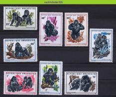 Nff118 FAUNA MENSAAP APEN ZOOGDIEREN GORILLA PRIMATE MONKEYS MAMMALS APES AFFEN SINGES RWANDA 1970 PF/MNH - Gorilla's