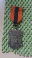 Medaille :Netherlands  - W.S.V De Ploeg Zelhem - Herfstwandeltocht   / Vintage Medal - Walking Association - Nederland