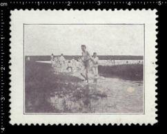 German Poster Stamp Cinderella Reklamemarke Vignette, Jamboree Scout Pfadfinder Swimming. - Vignetten (Erinnophilie)