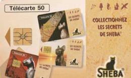 FRANCIA. SHEBA. CATS - GATOS. 50U. 0635. 03/96. (322). - Gatos