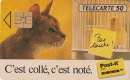 FRANCIA. Post-it. CATS - GATOS. 50U. 0321. 02/93. (321). - Gatos