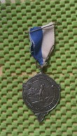 Medaille :Netherlands  -   V.D.Z - P.W.A Boswandeltocht Veenendaal  / Vintage Medal - Walking Association - Nederland
