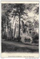 Carte Postale  45.  Marchais-Poissons  Forêt De Montargis  Trés Beau Plan - Montargis