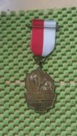 Medaille :Netherlands  -  Voorjaarstocht E.W.B Enschede   / Vintage Medal - Walking Association - Nederland