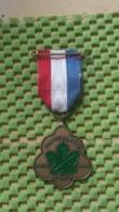 Medaille :Netherlands  -  Capitulatie Wandel Tocht 5 Mei-Wageningen   / Vintage Medal - Walking Association - Nederland