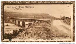 S9  ALGERIE  VIADUC OUED DAMOUS 10 X 6 Cm  (cliché O.E.. ) TRADECARD CHOCOLATE Africa Afrique - Vieux Papiers