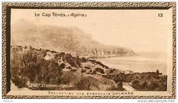 S9  ALGERIE  CAP TENES  10 X 6 Cm  (cliché O.E.. ) TRADECARD Afrique Africa - Vieux Papiers