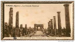 S9  ALGERIE  TIMGAD   10 X 6 Cm  (cliché O.E ) TRADECARD CHOCOLATE Africa Afrique - Vieux Papiers