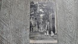 27 Harcourt Grande Allée Du Parc Du Chateau 1921 - Harcourt