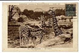 CPA-Carte Postale -France-Paris-exposition De 1931-Parc Zoologique VM7590 - Exhibitions