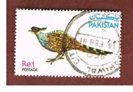 PAKISTAN  -  SG 496  -  1979  BIRDS: PHEASANTS (CATREUS WALLICHII)  -  USED ° - Pakistan