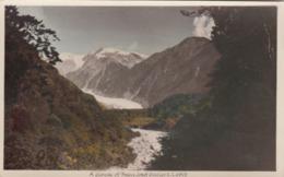 RP: Franz Josef Glacier , New Zealand , 1910-30s - New Zealand
