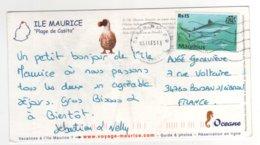 """Beau Timbre """" Requins  """" Sur Cp , Carte , Postcard Du 05/11/2005 - Mauricio (1968-...)"""
