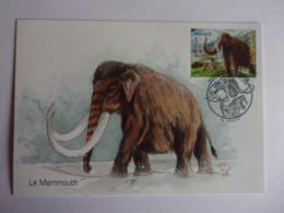 Carte Postale Le Mammouth Animaux Préhistorique La Maison Du Marbre Et De La Géologie à Rinxent Mamut Mammut Mammoth - Préhistoriques