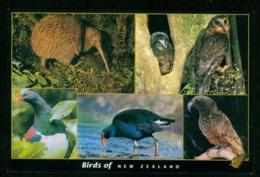AX Birds Of New Zealand | Sent To Germany, 2001 - Birds