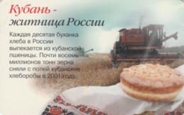 PHONE CARD RUSSIA STC KRASNODAR (E54.3.8 - Rusia