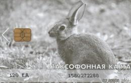 PHONE CARD RUSSIA MAGADAN (E54.8.7 - Rusia