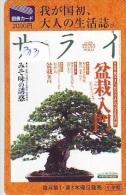 Télécarte Japon * Arbre Nain * BONSAI  (313) Dwarf Tree Japan Phonecard * Telefonkarte Baum - Fleurs
