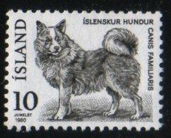 Islande 1980 Dog Chien Canis Familiaris Fauna Faune  Animaux Mammifères Mammals   N° 550  MNH   Neuf Sans Charnière TB - Neufs