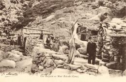 CORSE -- Près De CORTE - UNE BERGERIE Au Monte Rotondo - Corte