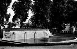 Fontenay Le Comte : Place Viète (cpsm) - Fontenay Le Comte