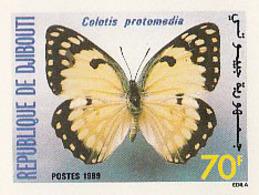 "IMPERF. Djibouti 1989 - Papillon ""Colotis Protomedia"": Michel 518; Yvert 649. - Djibouti (1977-...)"