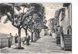 14836 POTENZA BELLA - Potenza