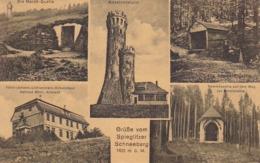 AK Grüße Vom Spieglitzer Schneeberg - Mehrbildkarte - March-Quelle Adelheidsquelle Kammkapelle  (44141) - Sudeten