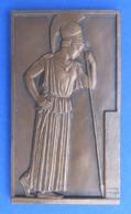Médaille En Bronze - L'Antiquité D'après Le Graveur Louis Muller - Meaux - Mai 1984 - Professionnels / De Société
