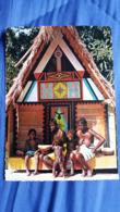 CPSM SURIMNAM CASE INDIGNE INDIEN D AMAZONIE FEMME AUX SEINS NUS ETCHNIQUE SJIEM FAT - Sonstige