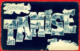 Souvenir De Tamise (Temse) - Temse