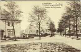 """Watermael-Boitsfort.  """"Le Logis"""". Avenue Du Ramier Vu Du Square De La Frégate. - Watermael-Boitsfort - Watermaal-Bosvoorde"""