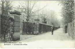 Watermael-Boitsfort.  Avenue Des Villas. - Watermael-Boitsfort - Watermaal-Bosvoorde