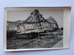 REAL PHOTO.NO COPY. Yugoslav Fighter Plane. Hidden - Oorlog, Militair