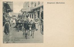 Barbados Brigetown  Pioneer . Hamburg Amerika Line . Undivided Back . Donkey Cart . Attelage Ane - Barbades