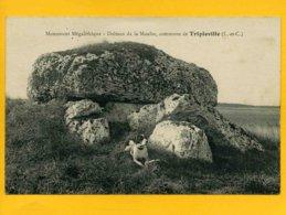 41TR1 - Monument Mégalithique - Dolmen De La Mouïse - Commune De Tripleville - Other Municipalities