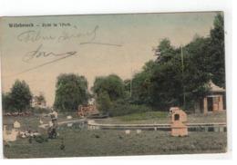 Willebroek -Willebroeck - Zicht In 't Park 1906 - Willebroek