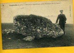 41TR8 - Tripleville - Monument Mégalithique - Pierre Druidique - Dite Le Crapaud - Autres Communes